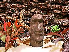 Terrain pix for Moai fish tank